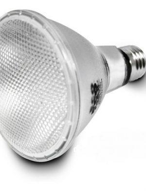 BOMBILLO LED EXTERIOR PAR 30 E27 10W 100-265V 6000K